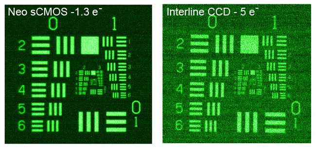 Comparison between Neo sCMOS and Interline CCD