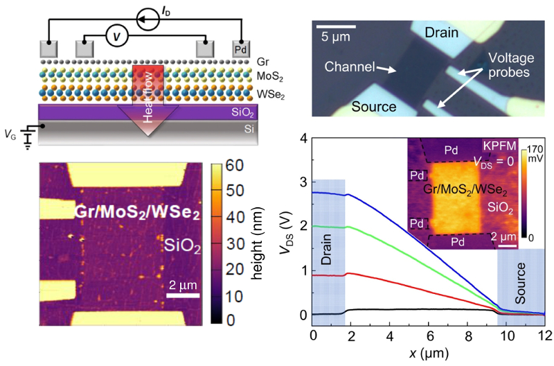 (top) Schematic and optical image of Gr/MoS2/WSe2 test structure; (bottom) topography image of uncapped heterostructure device; graph of surface potential across the device at different bias voltages with inset showing surface potential image of an entire device.