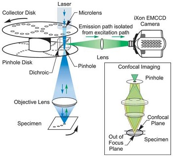 Diagram showing how only light (denoted by green) from the right plane passes through the pinhole