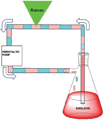 Schematic of the flow system / Raman sampling setup