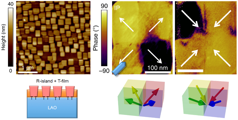 (left) Topography image and conceptual drawing of BFO film with self-assembled nanoislands; (right) PFM in-plane phase images for a nanoisland before and after polarization switching, and schematics with corresponding polarization vectors.
