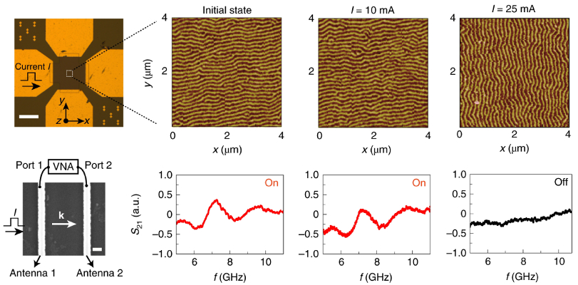 Current-switching experiments for reconfigurable spin-wave propagation: Optical and scanning electron micrographs of device; MFM images and corresponding spin-wave transmission signal for device in initial state and after 10 μs current pulses of 10 mA and 25 mA.