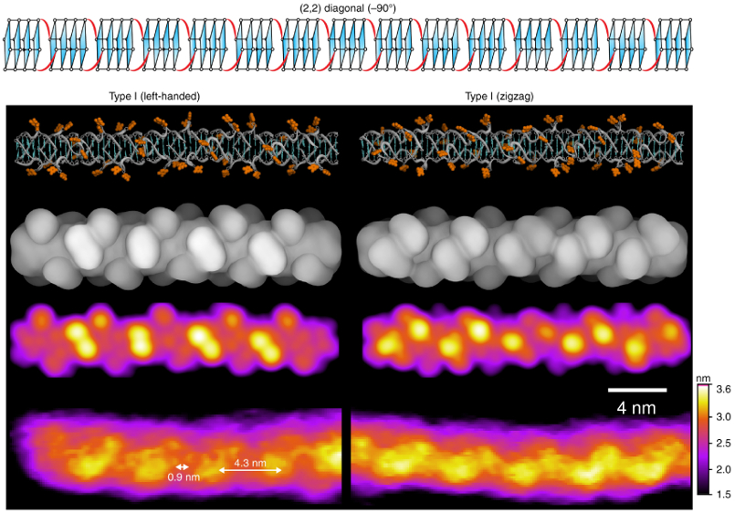 Comparison of modeling and AFM experimental results for left-handed and zigzag Type I G-wires.