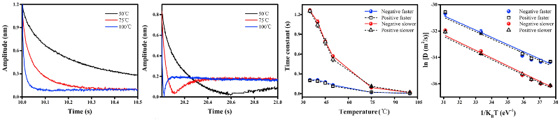 Relaxation behavior measured at 55, 75, and 100 C; time constants versus temperature for faster and slower relaxation processes; plot of D versus inverse temperature to obtain activation energy.