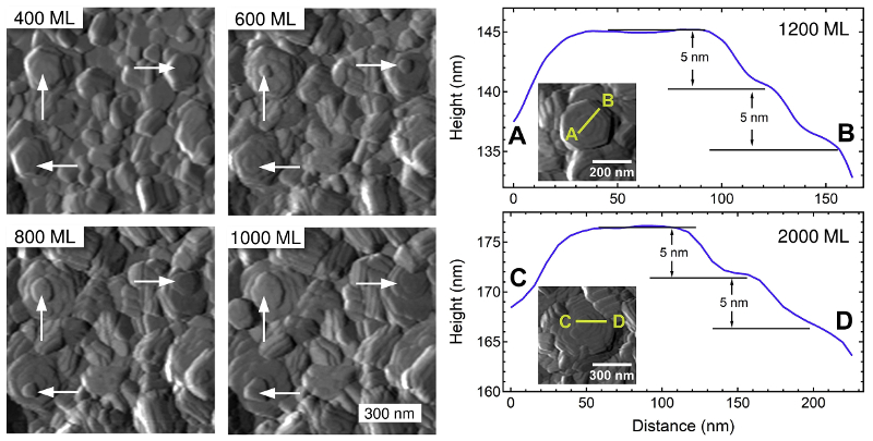 In-situ AFM topography images and height profiles across selected features for different numbers of zinc monolayers