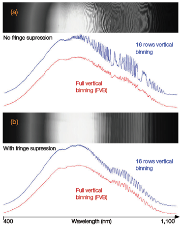 FVB spectra and 16-row high binned track spectra of a broadband tungsten source acquired with a 'standard' back-illuminated CCD and a back-illuminated CCD with 'fringesuppression' attached to a Shamrock 750 spectrograph