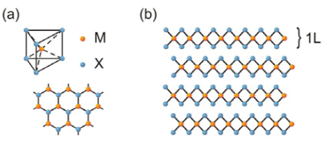 Figure 1: Crystal structure of MX2 based transition metal dichalcogenides.