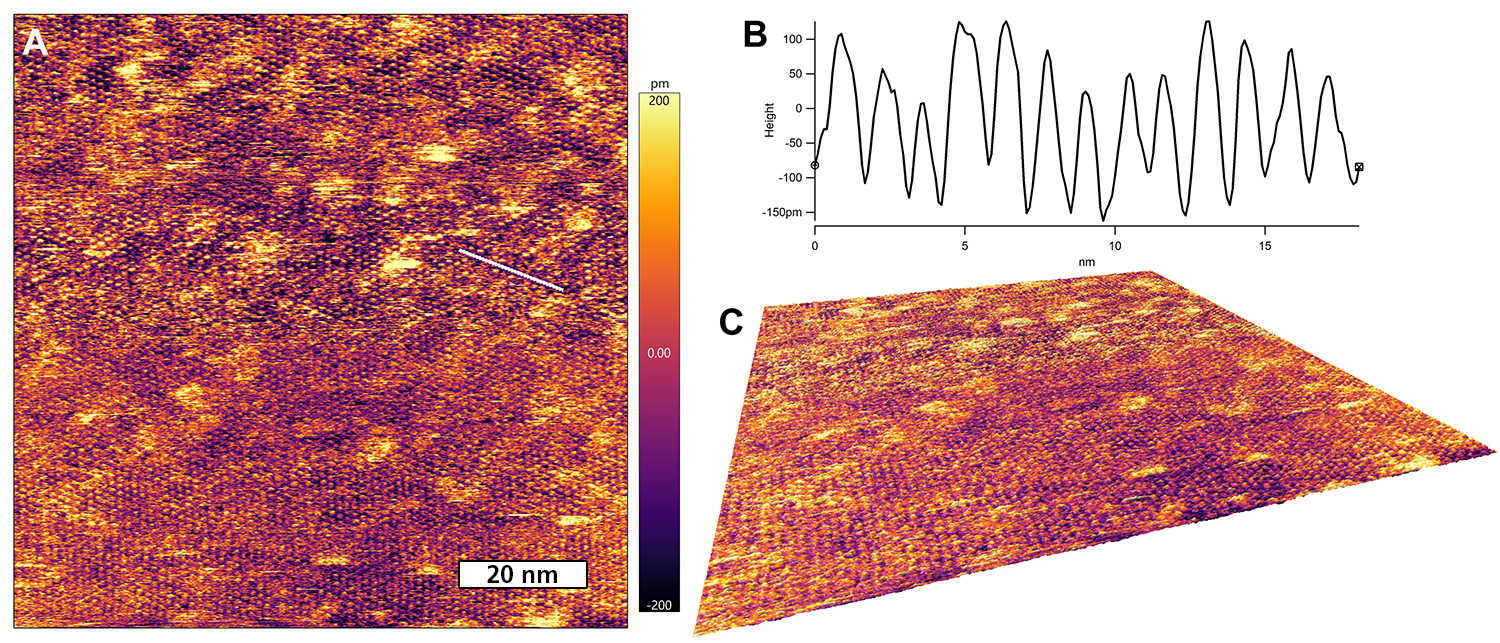 Low-amplitude tapping mode molecular lattice resolution of CoOEP