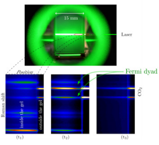 Figure 3: Raman spectral images acquired at three different times