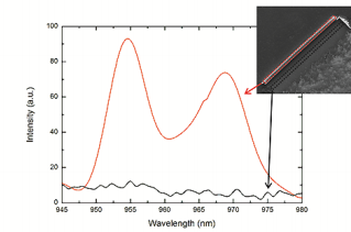 Fig. 3. Intensity plotted against the wavelength. The emission wavelength of a 4 nm InGaAs quantum well (red curve) has two peaks (955 nm and 968 nm). The black curve shows a reference measurement of the area next to the tube.