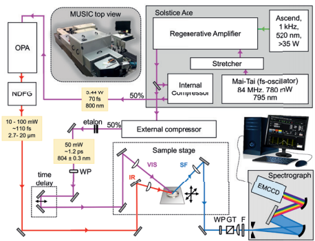 Figure 1 Schematic overview of MUSIC - Münster Ultra-fast Spectrometer for Interfacial Chemistry. Inset: Photograph of MUSIC showing a top view with the Andor Newton EMCCD detector and Kymera spectrograph in the front. Boxes are used to reduce stray light and to purge the IR beam path with dry air. Key: IR: broadband infrared pulse, VIS: narrowband visible pulse, SF: sum-frequency pulse generated, WP: retarders, GT: Glan-Taylor polarizer, F: short-pass filter, EMCCD: electron multiplying charge-coupled device.1