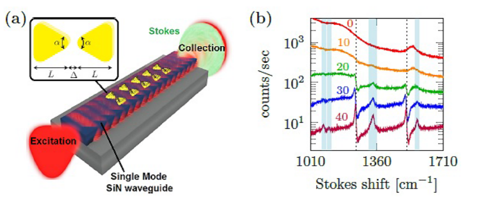 Figure 1: (a) Schematic of the device: single mode silicon nitride (SiN) waveguide patterned with an array of nanoplasmonic bowtie antennas. (b) SERS spectra of waveguides coated with a different number N of antennas (10, 20, 30, 40), N=0 is a reference waveguide without antennas.