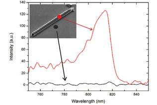 Fig.4. Intensity plotted against the wavelength. The emission curve of a transferred microtube on a glass/PDMS substrate with GaAs QW embedded in the tubes wall shows a characteristic peak at 814 nm (red curve, in comparison the glass/PDMS substrate shows no increase in this specific wavelength region (black curve).
