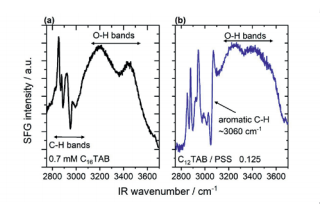 Figure 2 Vibrational SFG spectra of surfactant modified air-water interfaces from aqueous solutions with (a) 0.7 mM cetyltrimethyl ammonium bromide (C16TAB) and (b) dodecyltrimethylammonium bromide (C12TAB) mixtures with sodium polystyrene sulfonate (PSS) at a molar mixing ratio of 0.125 with respect to the monomer concentration of PSS: