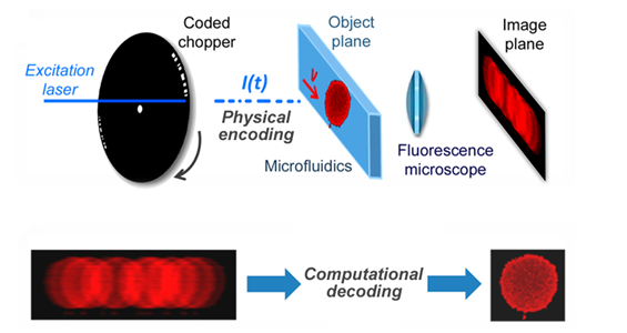 Coded excitation fluorescence microscope