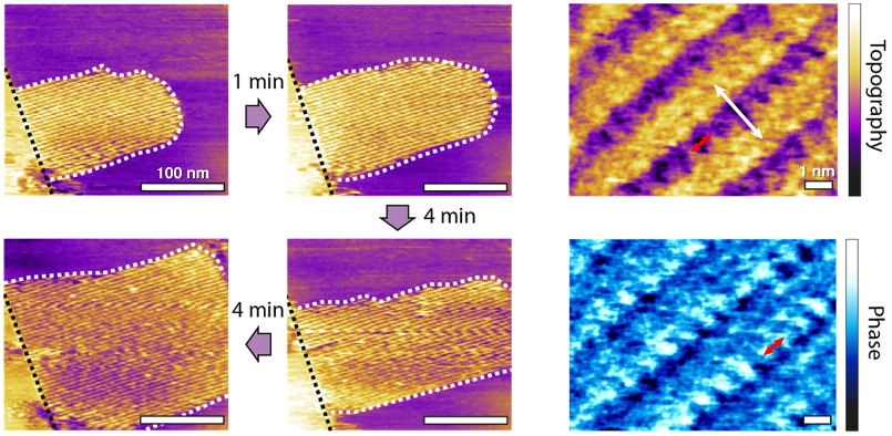 (left) Topography images of evolving methanol−water interfacial structures over 9 minutes; (right) high-resolution topography and tapping-mode phase images.