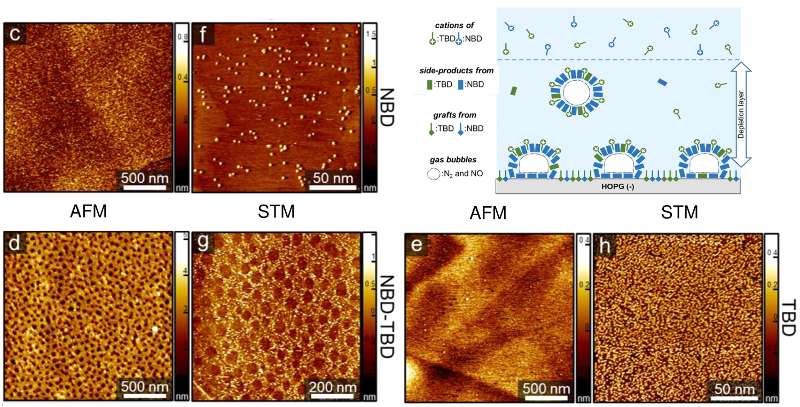 AFM and STM images of HOPG surface after grafting with pure NBD, pure TBD, and 1:1 NBD-TBD mixture; schematic of proposed nanocorral formation process.