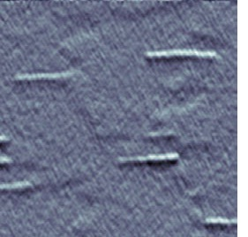 AFM image of the investigated QWRs