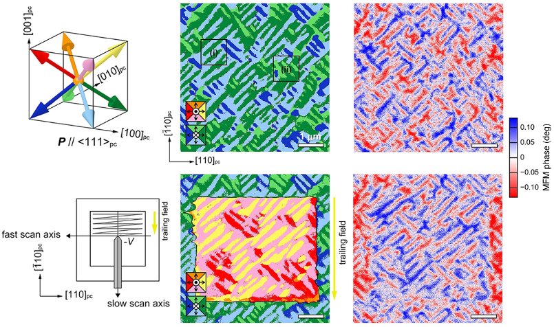 (left) Diagrams of (top) possible polarization directions in BFCO and (bottom) experimental scanning configuration; images of (middle) total PFM response and (right) MFM phase for (top) as-grown and (bottom) poled films.