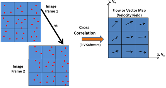 Generation of the Vector map by Image Processing with specialist PIV software