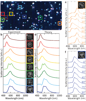 Figure 1: Optical properties of small (N ≤ 4) nanoclusters. (a) Darkfield scattering hyperspectral image of nanoclusters performed over 100 × 100 μm squares, (b) Small (N ≤ 4) silver nanoclusters dark-field scattering spectra. Corresponding SEM images are shown in c. (d) Finite element method calculations of the scattering spectra of the individual nanoclusters (e) Polarization-dependent scattering spectra of the dimers (f) Polarization-dependent scattering spectra of the tetrahedron. Scale bars correspond to 50 nm.