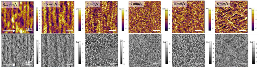 Tapping mode topography and phase images of films printed at six different speeds between 0.1 mm/s and 5 mm/s