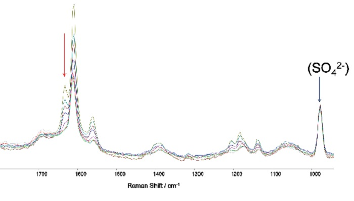 A series of captured Raman spectra illustrating how the variation in intensity of the feature at 1631 cm-1 facilitates monitoring of the reaction process through time