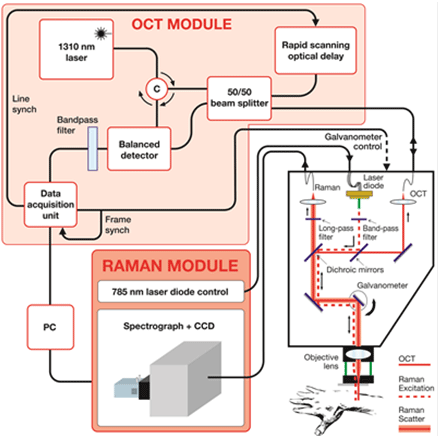 Schematic showing the raman system layout