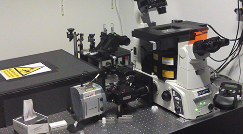 The setup for multi-colour direct STORM in the lab of Jan Schmoranzer and Andre Lampe showing the iXon3 897 and the OptoSplit II