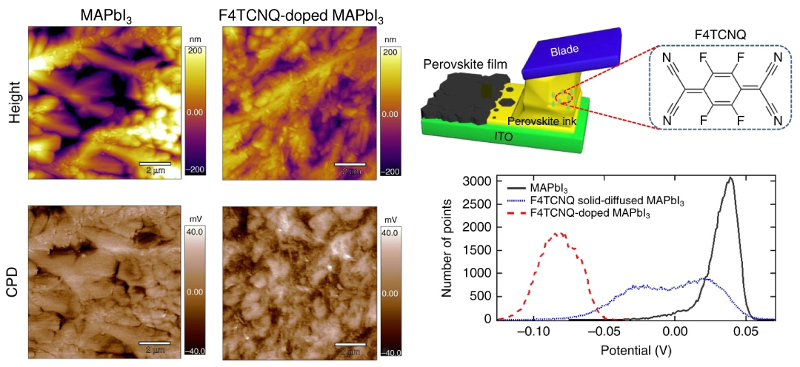 Topography and KPFM images of undoped and F4TCNQ-doped MAPbI3 films with corresponding KPFM histograms; schematic of doctor blading and doping process