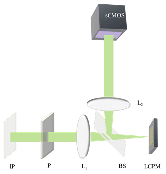 Optical setup for spatial light interference microscopy (SLIM): IP, Image plane; L1,L2; Fourier Lenses; P, polarizer, BS; Beam Splitter, LCPM; Liquid crystal phase modulator