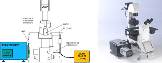 Schematic and picture of a spectrograph directly coupled to the side port of an inverted microscope