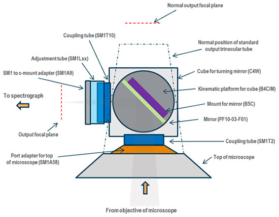 Schematic showing the details of the example chosen where specific Thorlabs parts are configured to adopt the top port of a Nikon Eclipse E600 microscope for direct coupling to a spectrograph