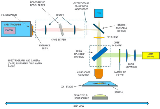 Schematic layout of system for Raman mapping on the microscopic scale based around an upright microscope