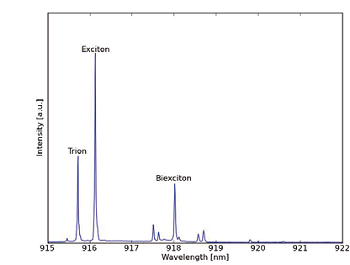 Luminescence spectrum of an InAs quantum dot. Trion, excitons and biexciton lines are annotated and other lines are related to other charges irrelevant in the experiments