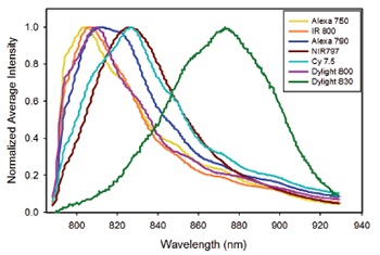 Average spectra of single beads stained with the following near infrared fluorophores: Alexa 750, IRDye800, DyLight 800, Cy7.5