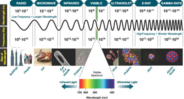 The Electromagnetic Spectrum, highlighting the narrow window of Visible Light that is detectable by the human eye.